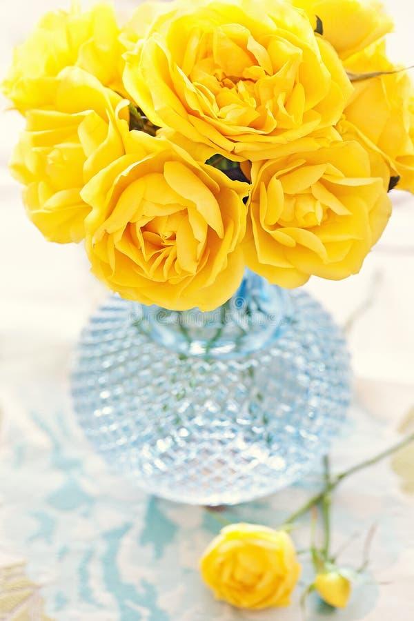 красивейшие свежие розы стоковое фото rf