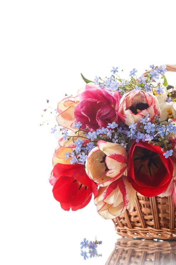 красивейшие тюльпаны букета стоковое изображение