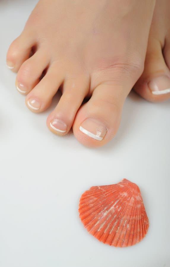 красивейшие французской ноги спы pedicure ногтя стоковая фотография