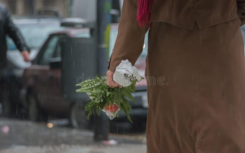 красивейшие цветки держа женщину ногтей стоковые фотографии rf