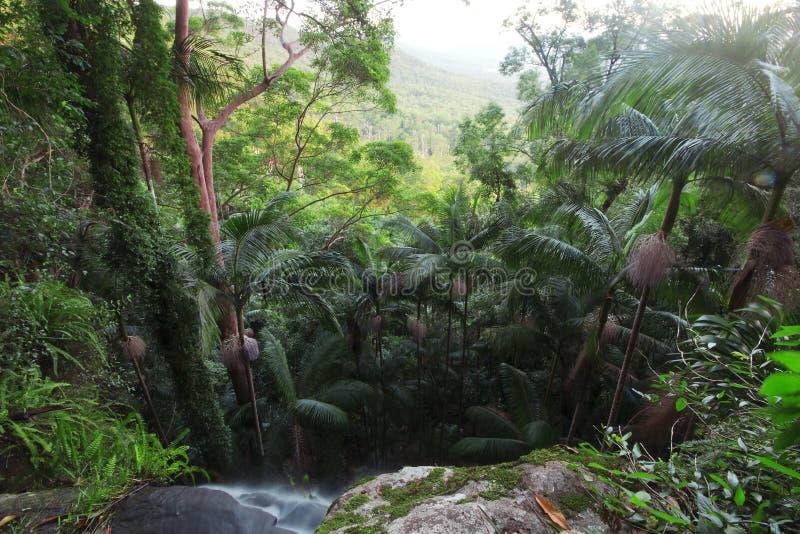 красивейший водопад стоковое фото rf