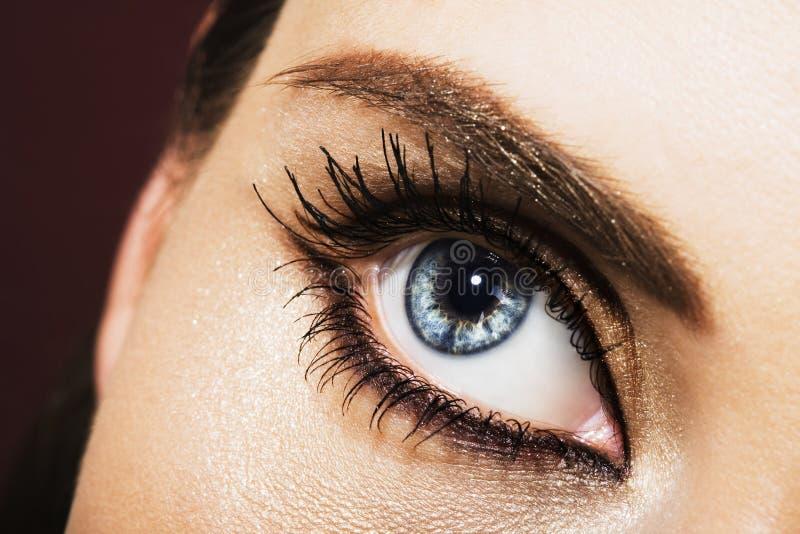 красивейший глаз стоковая фотография rf