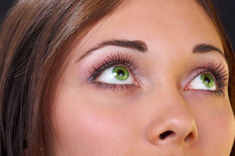 красивейший зеленый цвет глаз стоковое изображение rf