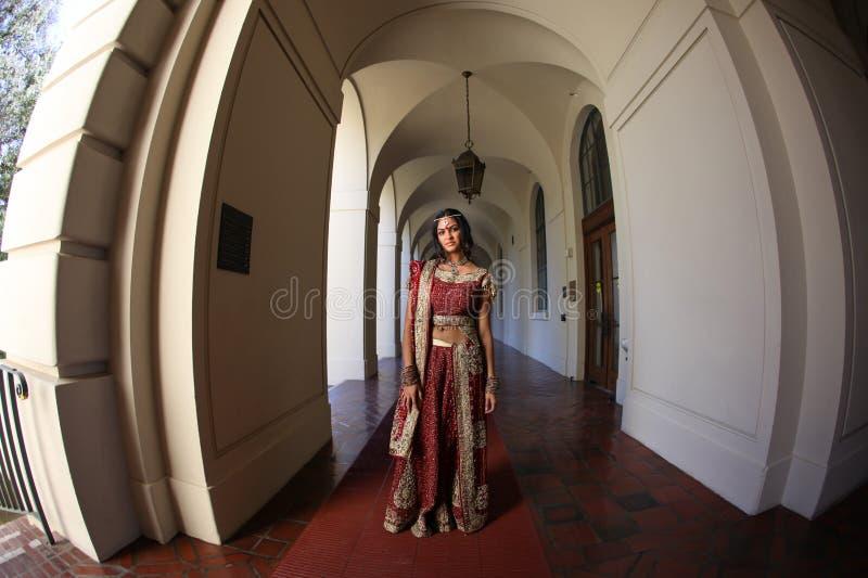 красивейший инец невесты стоковые фотографии rf