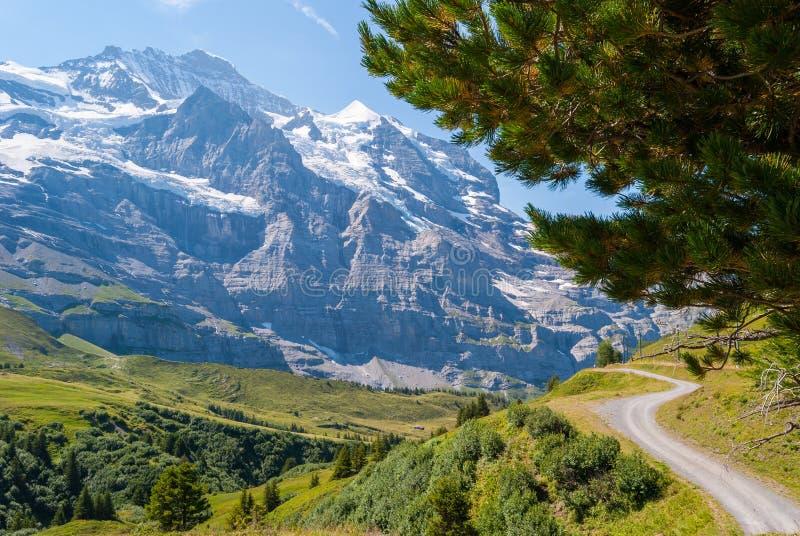 Красивейший ландшафт горы лета Bernese Oberland, Швейцария стоковые фото