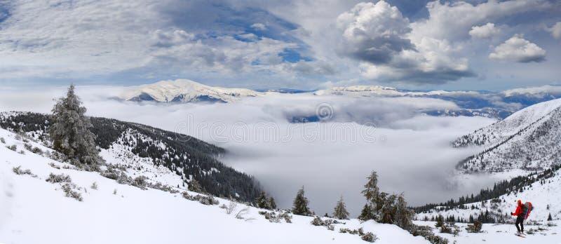 Красивейший ландшафт зимы стоковое фото