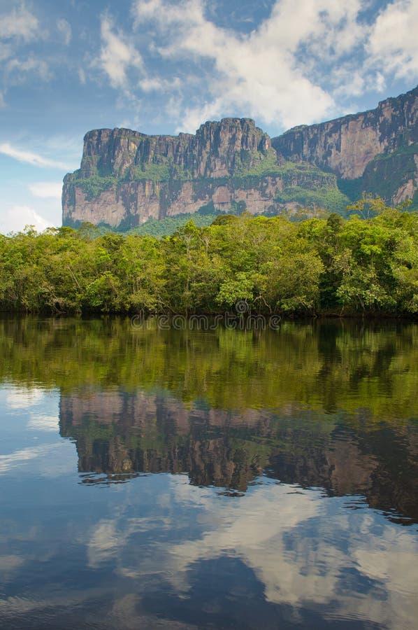 красивейший национальный парк Венесуэла canaima стоковая фотография rf