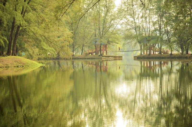 красивейший пейзаж стоковая фотография rf
