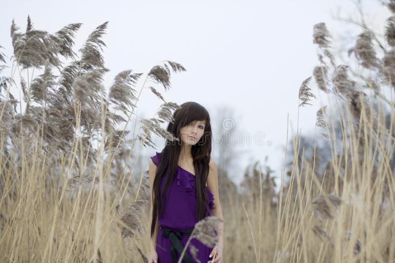 красивейший тростник девушки брюнет стоковые изображения