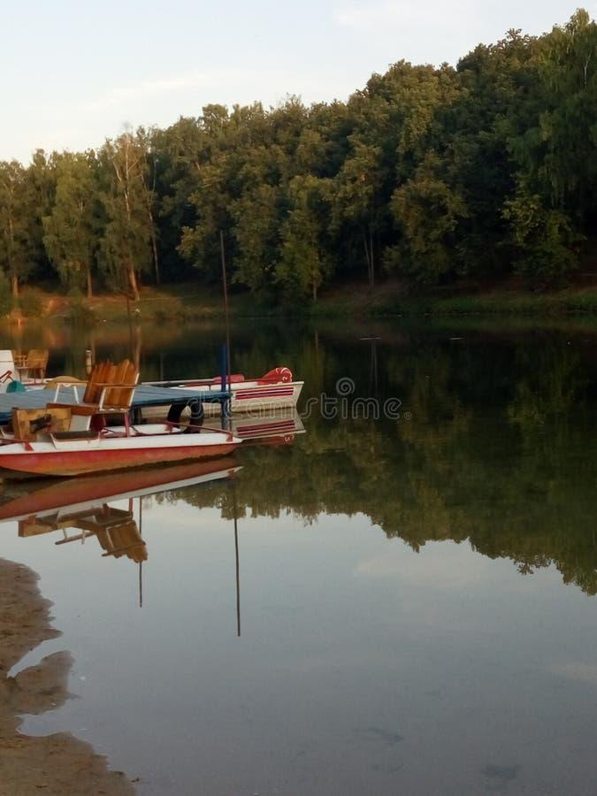 Красивое августовское стоковые фотографии rf