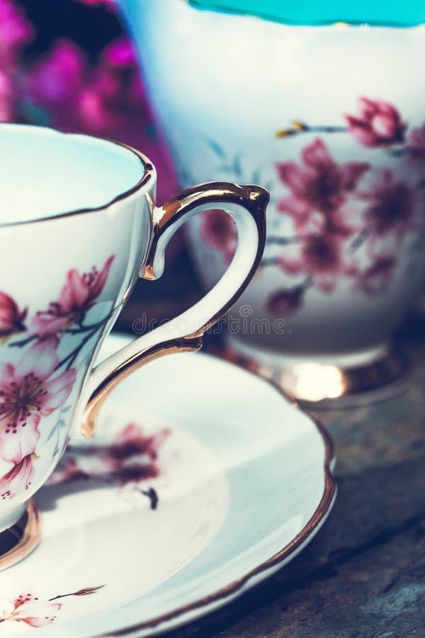 Красивое, английское, винтажное чашка с японскими цветениями вишневого дерева стоковое фото