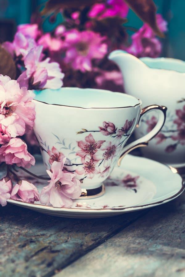 Красивое, английское, винтажное чашка с японскими цветениями вишневого дерева стоковое фото rf