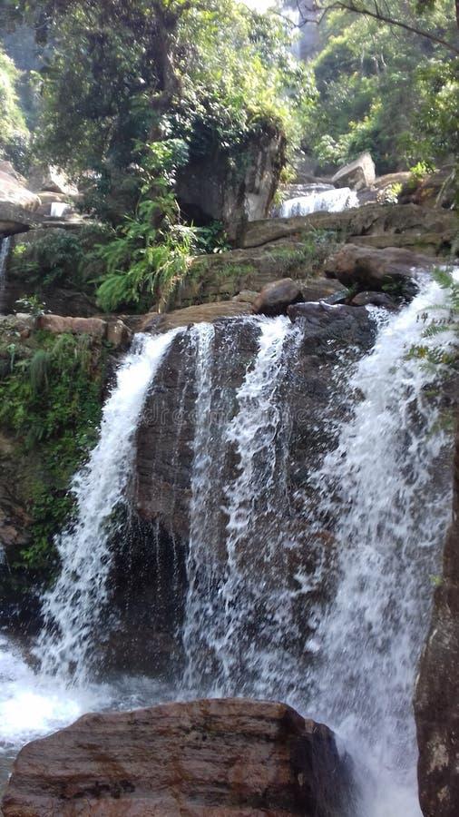 Красивое естественное падение воды стоковая фотография rf
