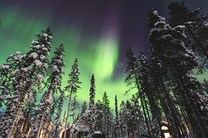 Красивое изображение массивнейшего пестротканого зеленого живого северного сияния, северного сияния стоковые фотографии rf