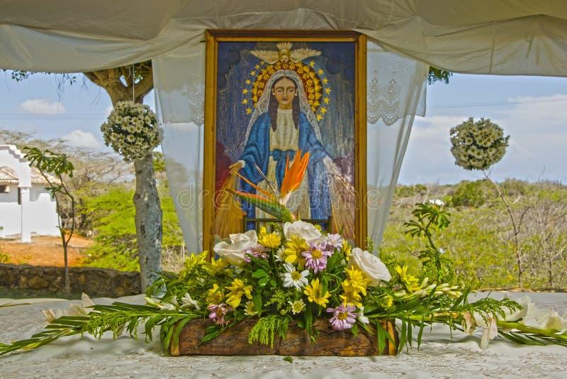 Красивое изображение с цветками virgin стоковое изображение