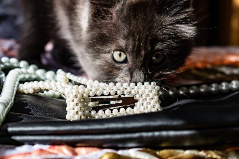 Красивое и модное украшение белых шариков жемчугов, славный milky цвет, на черной кожаной предпосылке стоковое фото