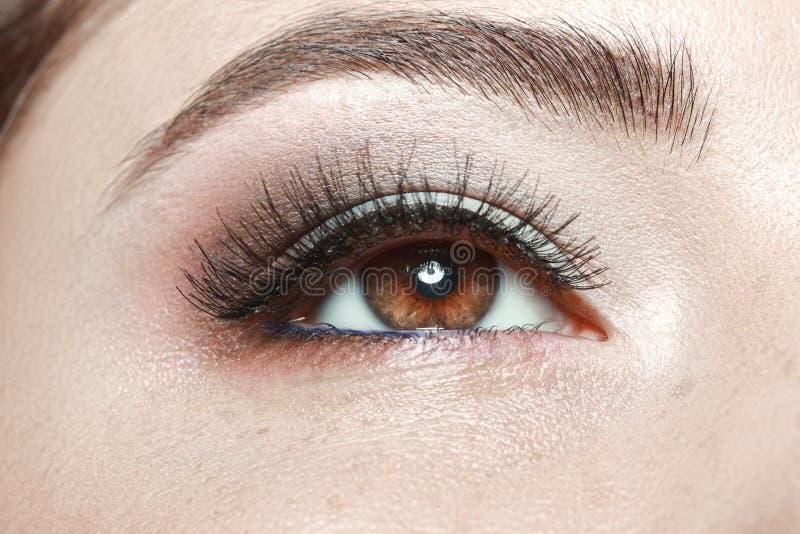 Красивое коричневое woman& x27; глаз s стоковое изображение rf