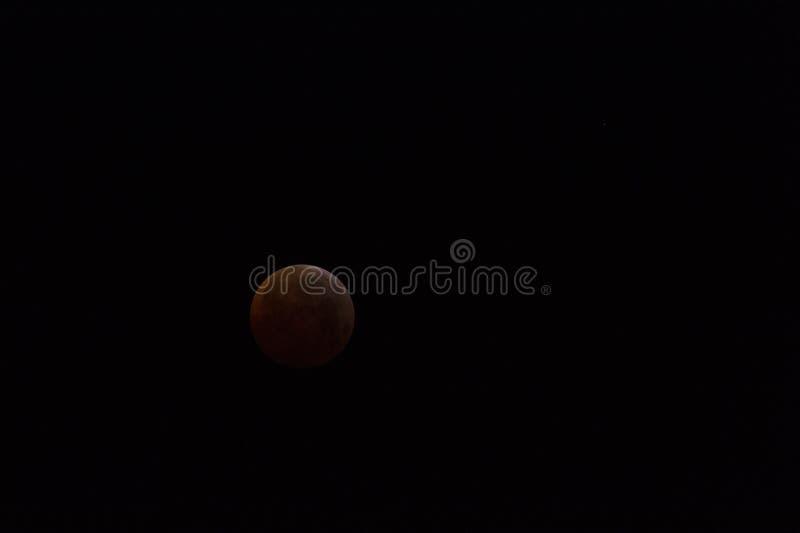 Красивое красное затмение январь 2019 полнолуния стоковая фотография rf