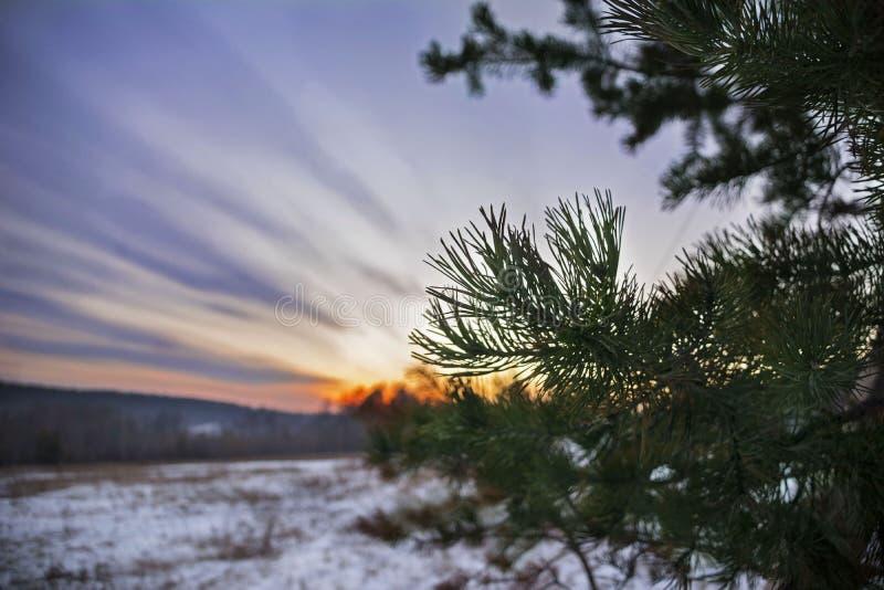 Красивое красочное небо захода солнца ландшафта зимы Необыкновенное явление погоды с протягиванными облаками стоковая фотография rf