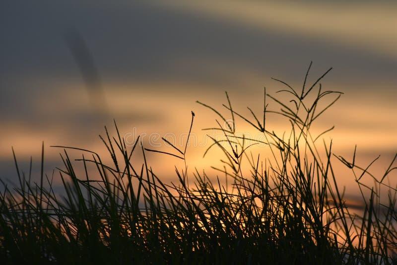 Красивое небо захода солнца, отраженное водой в озере стоковое изображение