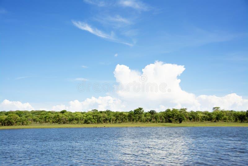 Красивое небо над запрудой стоковое изображение rf