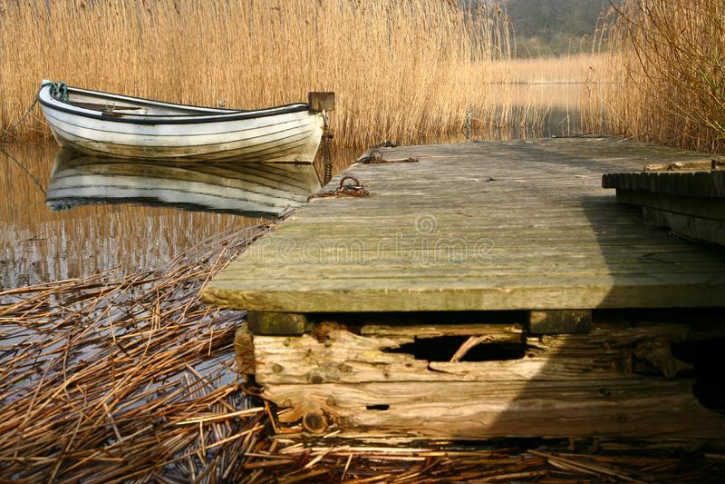 Красивое озеро в Дании стоковая фотография
