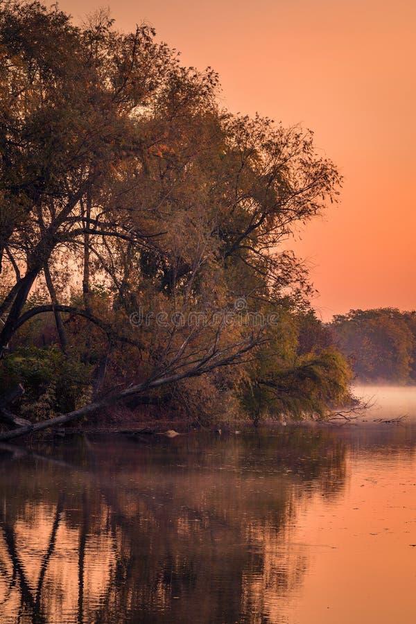 Красивое озеро с туманом в утре с ржавыми деревьями стоковые изображения rf