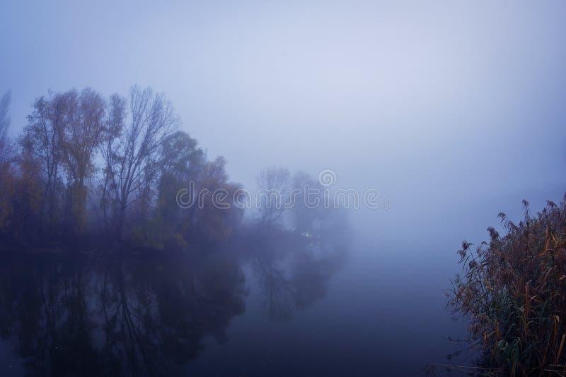 Красивое озеро с туманом в утре с ржавыми деревьями с fis стоковое изображение