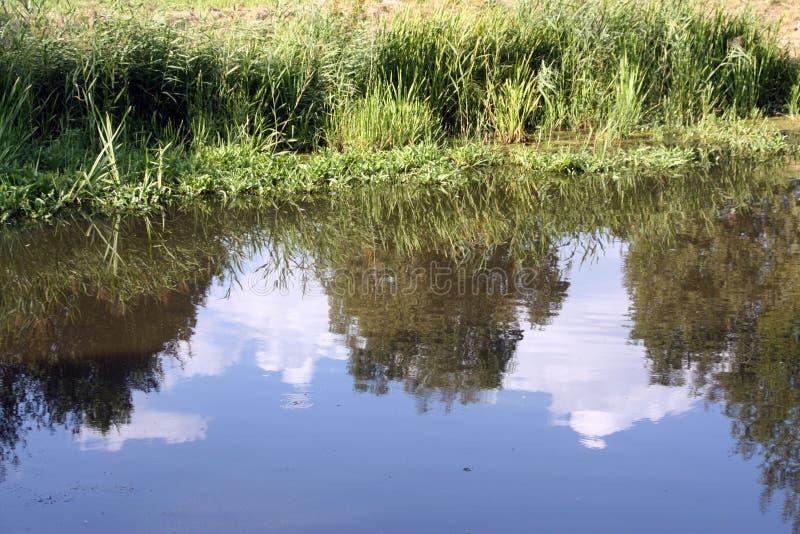 Красивое отражение голубого неба и белых облаков стоковое изображение