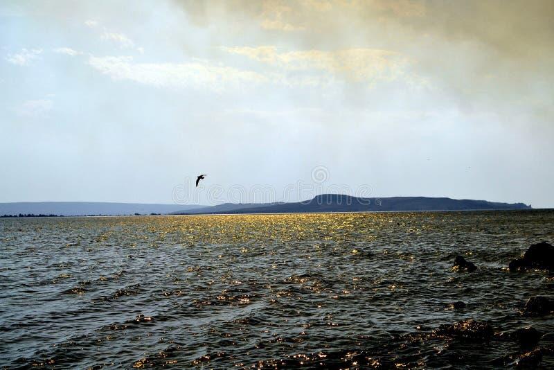 Красивое побережье моря Азова стоковое изображение rf