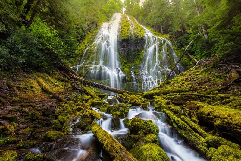 Красивое полномочие понижается в туман, Орегон стоковые фотографии rf