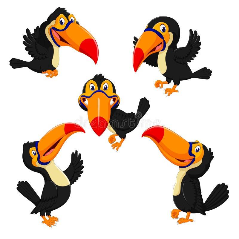 Красивое собрание оранжевого клюва toucan с различный представлять иллюстрация штока