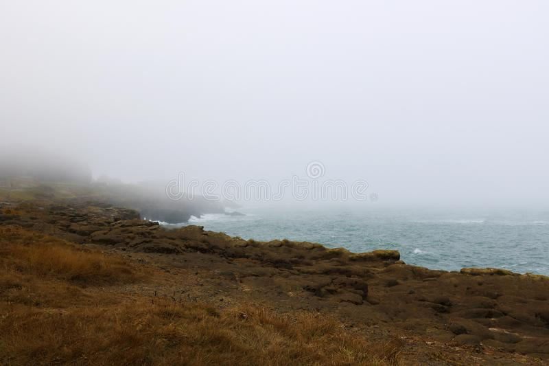 Красивое Тихоокеанское побережье в туманном утре, Калифорния США стоковое фото rf