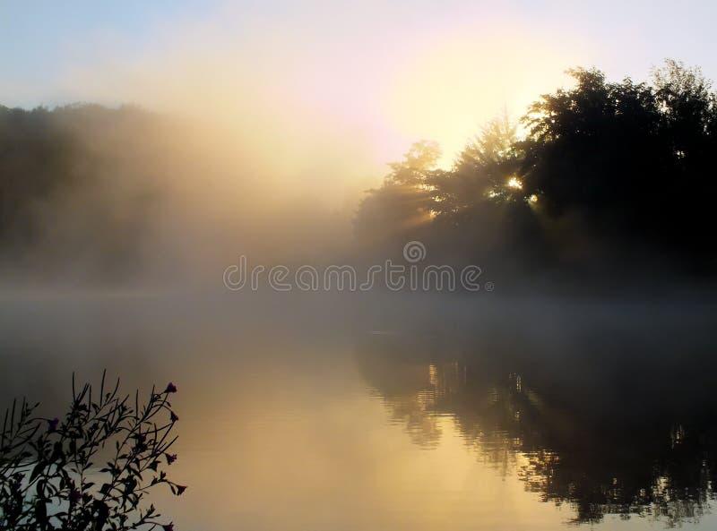 Красивое туманное озеро стоковое фото rf