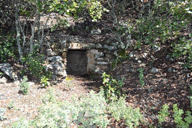 Красивое укрытие спрятанное в лесе в Кипре стоковое изображение rf