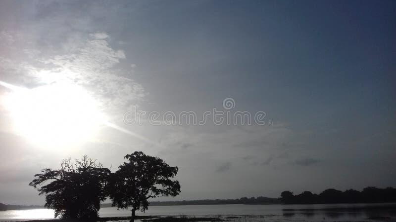 Красивое утро красивого места Шри-Ланка стоковое фото