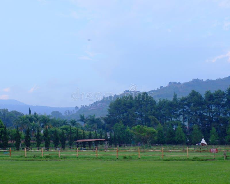 Красивое утро на De Ранчо, Бандунг, Индонезия стоковое фото rf