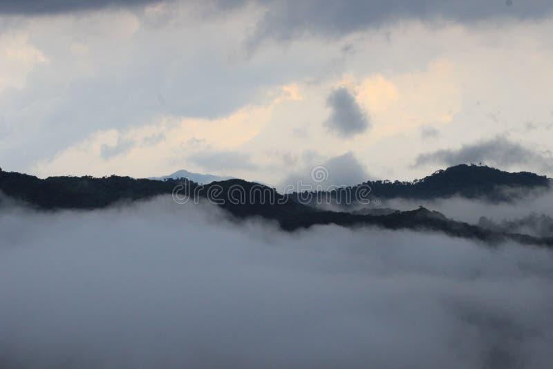 Красивое Indian Hills, Munnar, Керала, Индия стоковые изображения rf