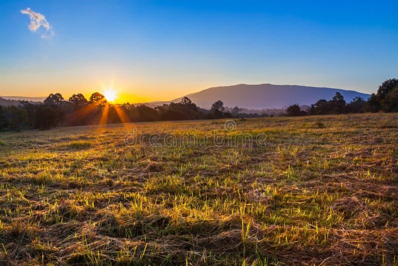 Красивое lanscape восхода солнца стоковые фотографии rf