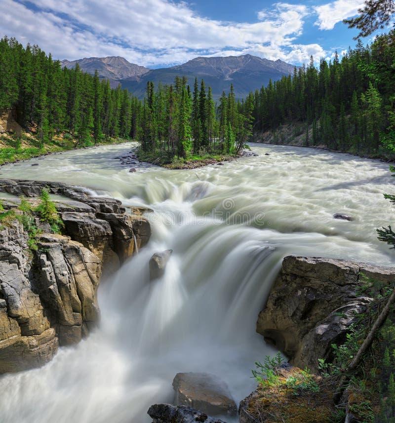 Красивое Sunwapta Falls в скалистых горах стоковое фото rf