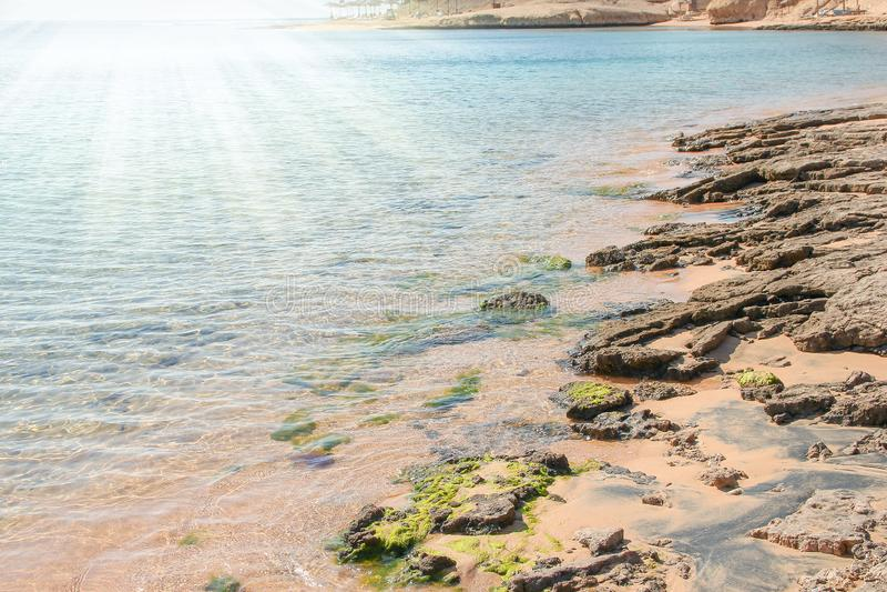 Красиво стильная морская вода пляжа с песком на предпосылке природы стоковые изображения
