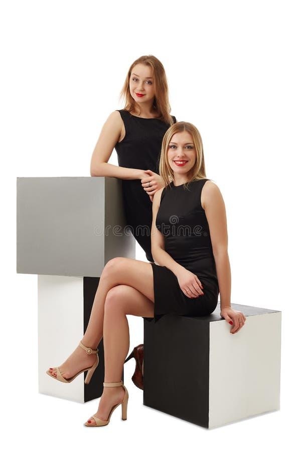 Красивые дамы дела представляя в студии стоковое изображение