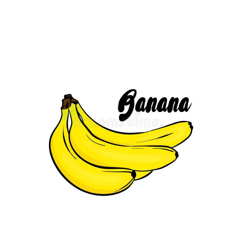 Красивые бананы также вектор иллюстрации притяжки corel fruits тропическо иллюстрация штока