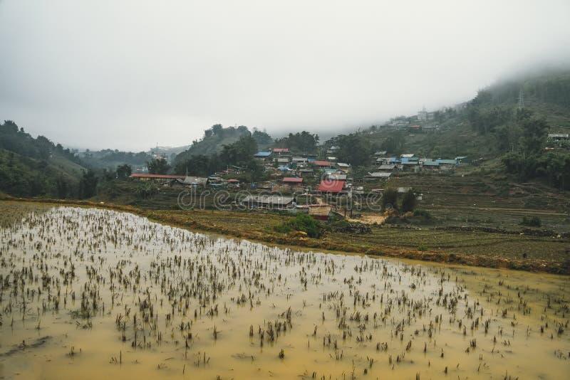 Красивые взгляды ландшафта террас риса во время зимы с сезона с грязной водой стоковое изображение