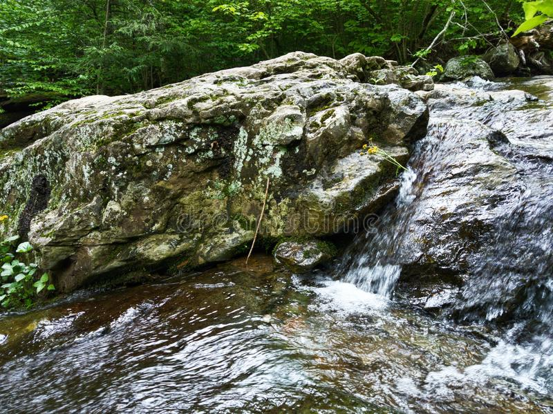 Красивые водопады национального парка Shenandoah стоковые фото