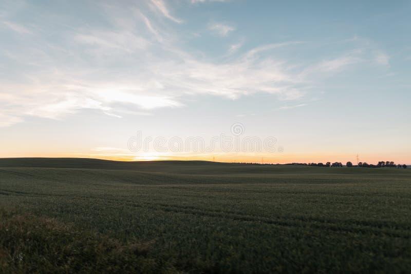 Красивые голубое небо и луг с зеленой травой на заходе солнца Изумляя заход солнца лета розовый на горизонте Сельская местность л стоковые фото