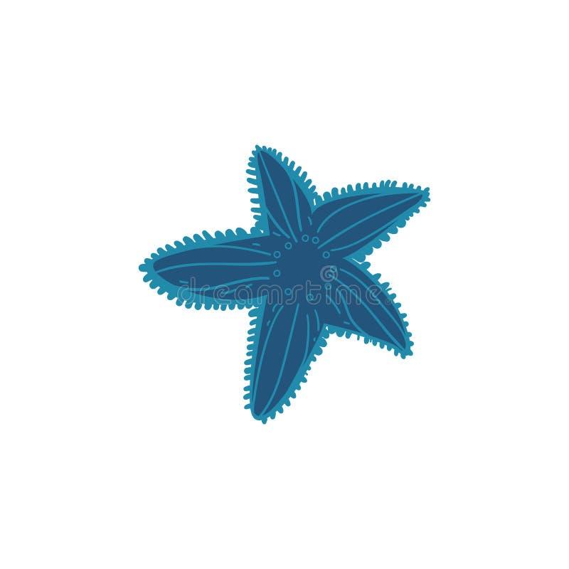 Красивые голубые морские звёзды при украшения изолированные на белой предпосылке иллюстрация вектора
