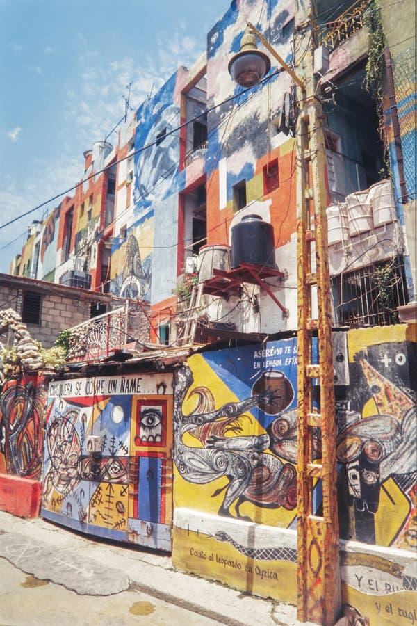 Красивые граффити искусства улицы Городская современная культура в улицах Мексики стоковые изображения rf