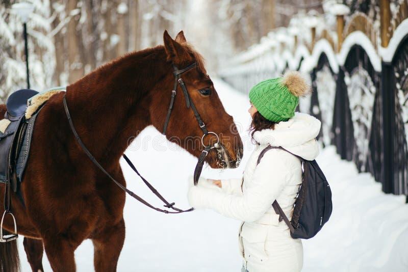 Download Красивые девушка и лошадь в зиме Стоковое Изображение - изображение насчитывающей приятельство, ангстрома: 81814509