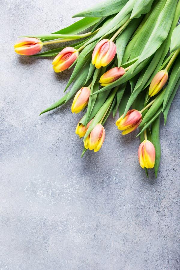 Красивые желтые оранжевые тюльпаны стоковые изображения